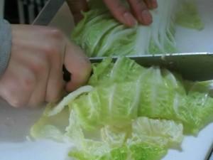 02白菜切り